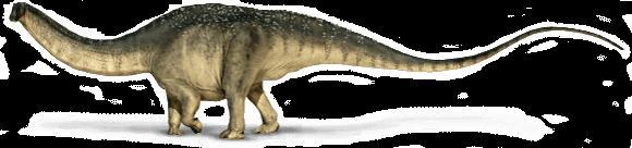 Wissenswertes über Apatosaurus