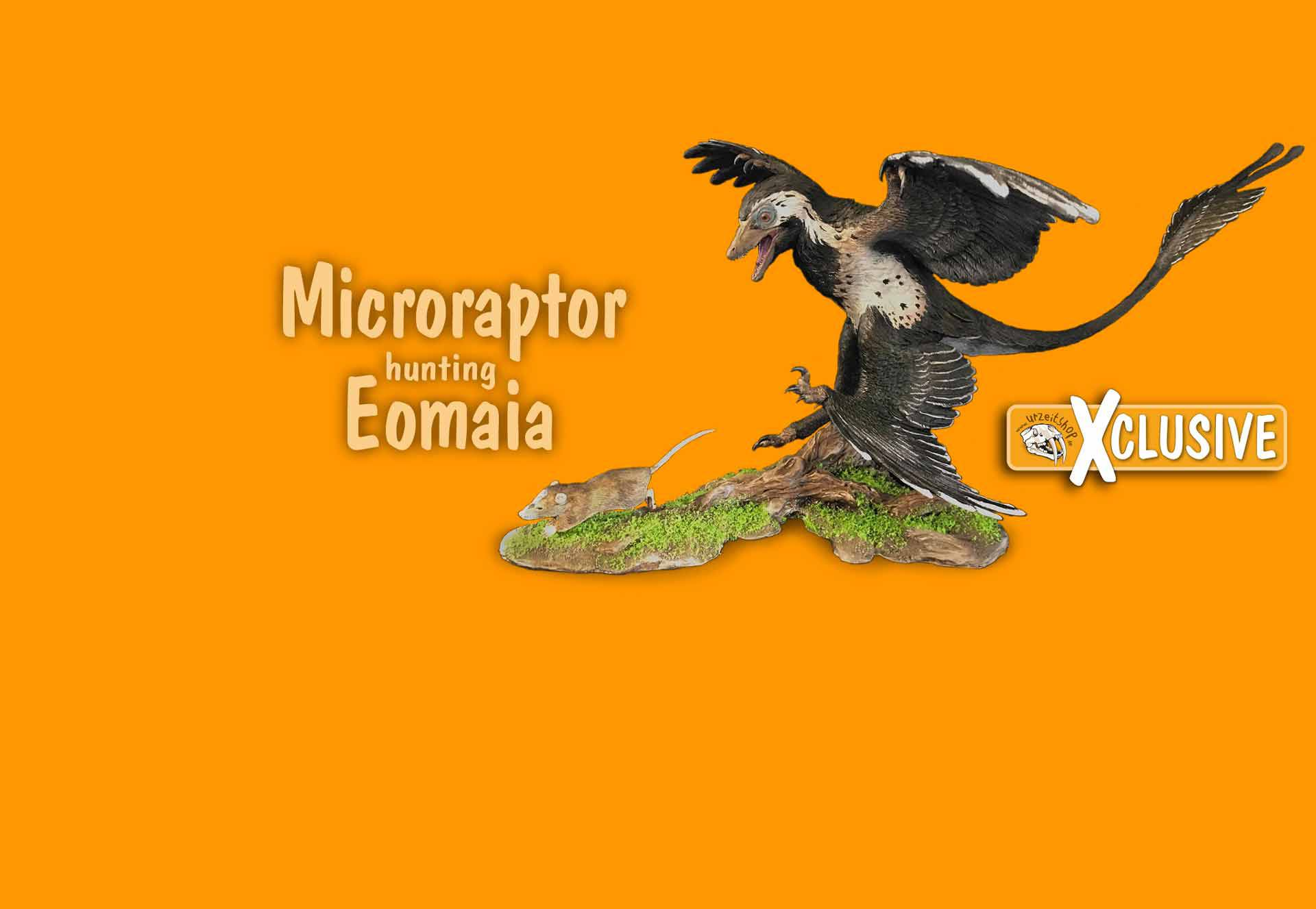 Microraptor hunting Eomaia