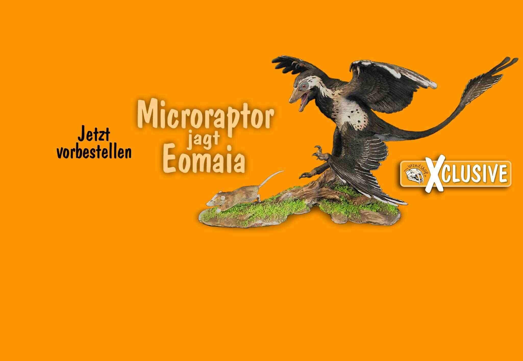 Jetzt vorbestellen: Microraptor jagt Eomaia